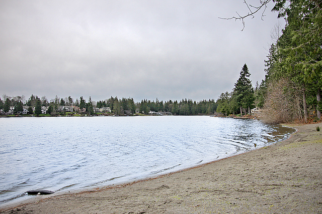 Cedar Downs Community Lake Lake Property Waterfront Home Maple Valley Amber Bills Real Estate