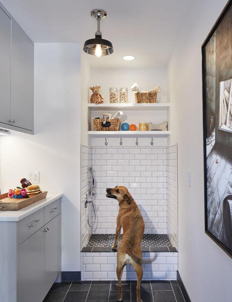 Dog home realtor Maple Valley Amber Bills Real Estate